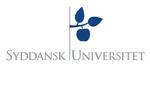ausgelagertes Foto von Interview Sebastian Bruns (ISPK) - Center for War Studies / Odense